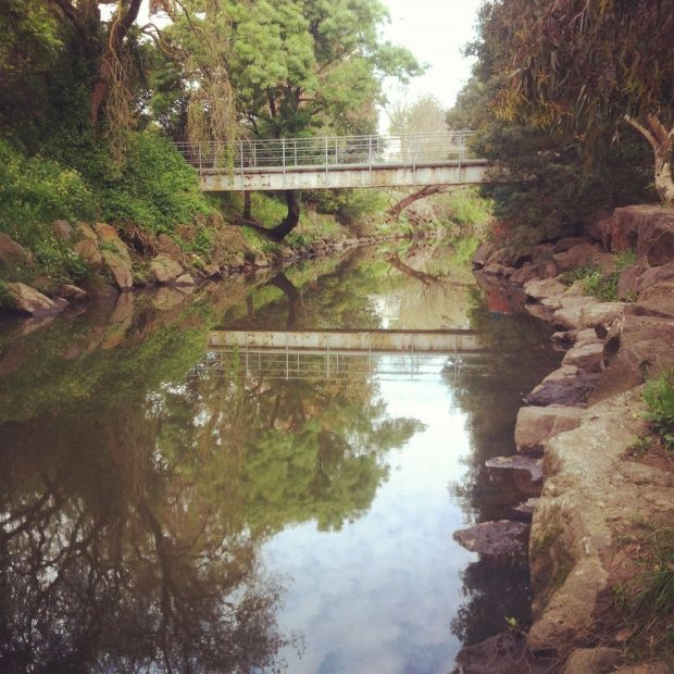 Another one of Melbournes streams (proving anything looks pretty nice with an instagram filter)