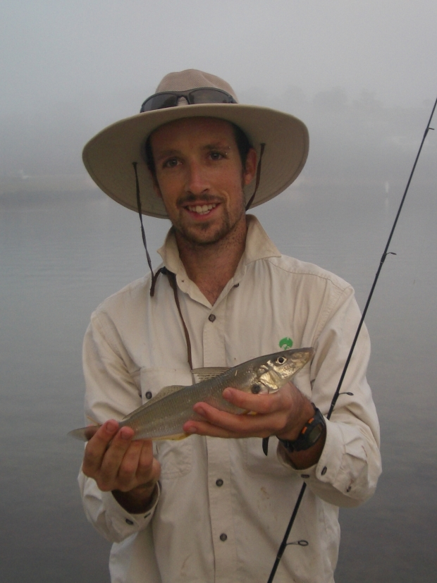 In low light and foggy conditions this hefty whiting boofed a white popper